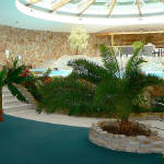 dudince-hotel-flora